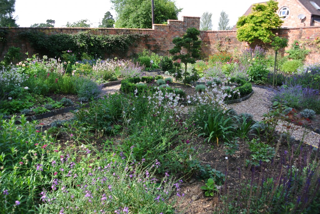 Warwickshire garden 4 months after planting